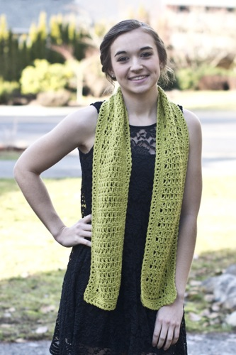 Recent Designs For Cascade Yarns Double Dyed Designer